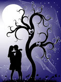 Couple at night Royalty Free Stock Images
