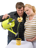 Couple nurturing life Stock Image