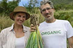 Couple of organic farmers showing green onion Royalty Free Stock Photo