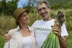 Couple of organic farmers showing green onion Stock Photos