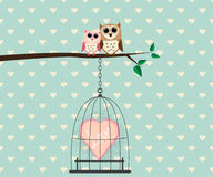 Couple Owl and Love In Cage. Couple Owl on Tree and Heart Love In Cage Vector Illustration royalty free illustration