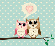 Couple Owl with Love Stock Photo