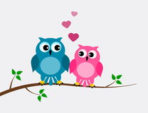 A couple of owl lover Royalty Free Stock Photos