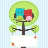 Couple of owls Stock Photos