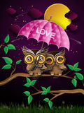 Couple of owls on the branch under full moon. Royalty Free Stock Images