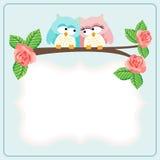 Couple owls custom label Royalty Free Stock Photo