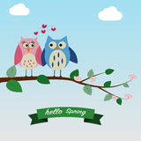 The couple of owls feeling love on the spring time background. Morning stock illustration