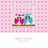 Couple of owls in love Royalty Free Stock Photography