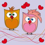 Couple of owls in love Stock Image