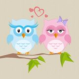 Couple of owls in love Stock Photography