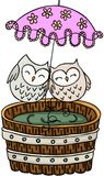 Couple owls with umbrella on wooden tub for a bath. Scalable vectorial image representing a couple owls with umbrella on wooden tub for a bath, isolated on white royalty free illustration