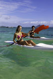 Couple paddling surfskis Royalty Free Stock Photo