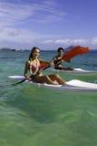 Couple paddling surfskis Royalty Free Stock Photo
