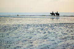 Couple on a pair of horses in Deauville, France Stock Photo