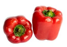 Couple of paprika royalty free stock images