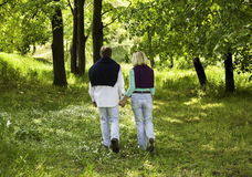 Couple in the park. Adult couple walking through forest, holding hands Stock Images