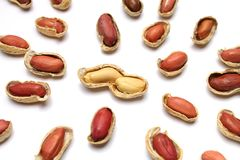 Couple of peanuts. Peanut couple surrounded by single peanuts, on white background. Metaphoric for business merger or human relations Stock Photos