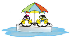 Couple of penguins lying inder a large umbrella Stock Photography