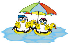 Couple penguins swimming on the flated duck in ocean. Happy penguins are in summer vacation on a white background vector illustration