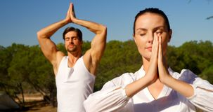 Couple performing yoga at safari vacation 4k. Couple performing yoga at safari vacation on a sunny day 4k stock footage
