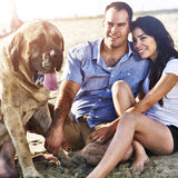 Couple with pet dog on the beach Royalty Free Stock Image