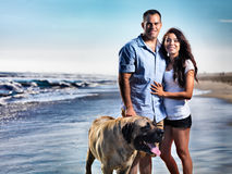 Couple with pet dog posing on the beach. Royalty Free Stock Images