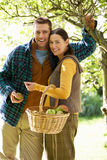 Couple picking apples in garden Stock Images