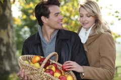 Couple picking apples Stock Image
