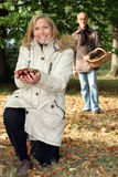 Couple picking chestnut. Royalty Free Stock Photo