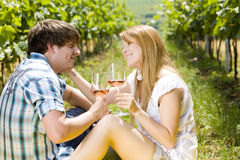 Couple at a picnic. In vineyard Stock Image