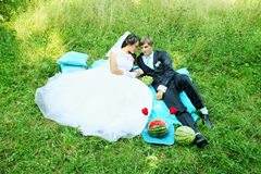 Couple at a picnic Royalty Free Stock Image