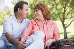 Couple at a picnic holding hands and smiling Stock Photos