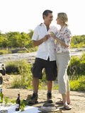 Couple On Picnic Toasting Wine. Full length of a couple toasting wine on open landscape Stock Photos