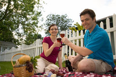 Couple on Picnic With Wine Glasses-Horizontal Royalty Free Stock Image
