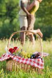Couple picnicking Royalty Free Stock Photo