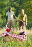 Couple picnicking Royalty Free Stock Image