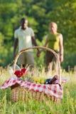 Couple picnicking Royalty Free Stock Image
