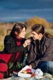 A couple picnicking on the field Royalty Free Stock Images