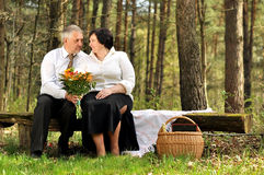 Couple picnicking in the forest Royalty Free Stock Photography