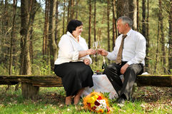 Couple picnicking in the forest Stock Images