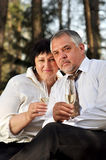 Couple picnicking in the forest Royalty Free Stock Photo
