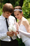 Couple with pigeons. Bride and groom with pigeons stock images