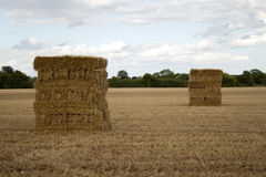 Couple piles of hay Royalty Free Stock Photos