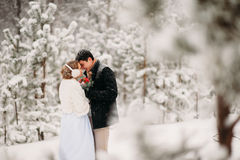 Couple in a pine forest. Loving couple in the pine snowy forest royalty free stock photo