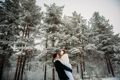 Couple in a pine forest Royalty Free Stock Images