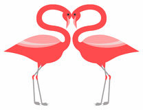 Couple pink flamingo vector illustration