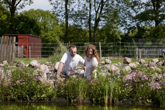 Couple on pink flowered garden pond. Summer, trees in background out of focus Stock Photos