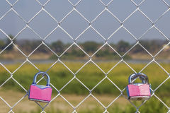 Couple pink padlock Royalty Free Stock Image
