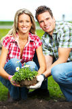 Couple planting flowers Royalty Free Stock Image