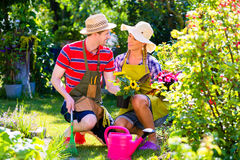 Couple planting flowers royalty free stock images